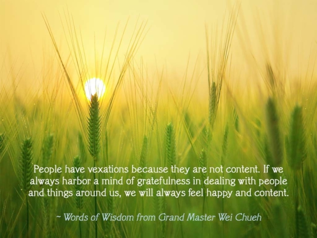 Words of Wisdom from Grand Master Wei Chueh 01