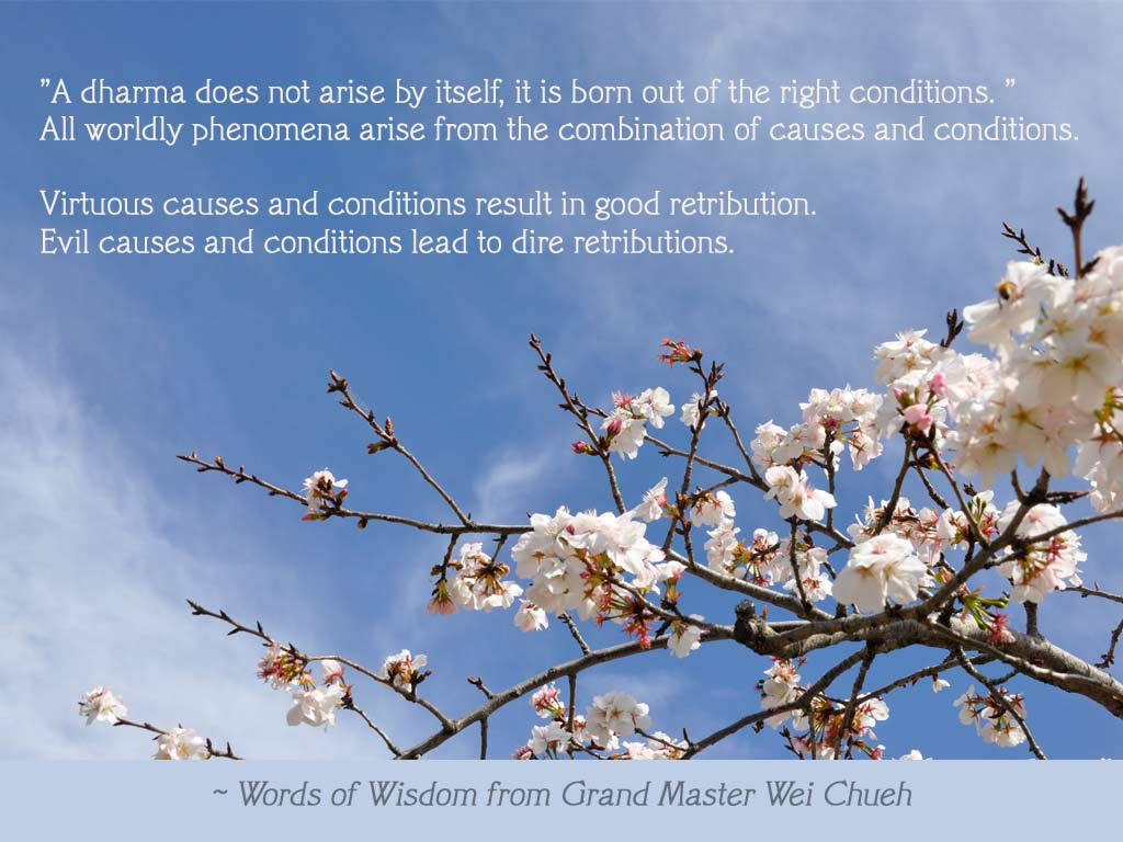 Words of Wisdom from Grand Master Wei Chueh 05