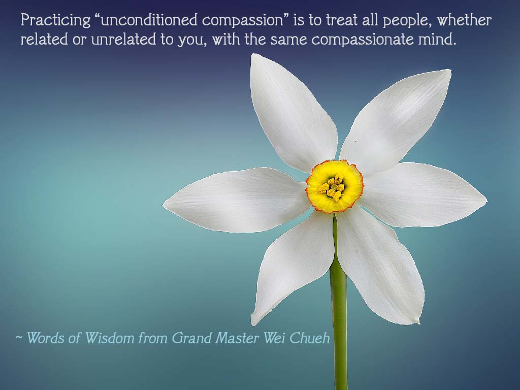 Words of Wisdom from Grand Master Wei Chueh 06