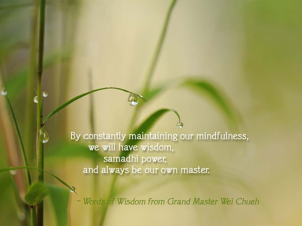 Words of Wisdom from Grand Master Wei Chueh 09