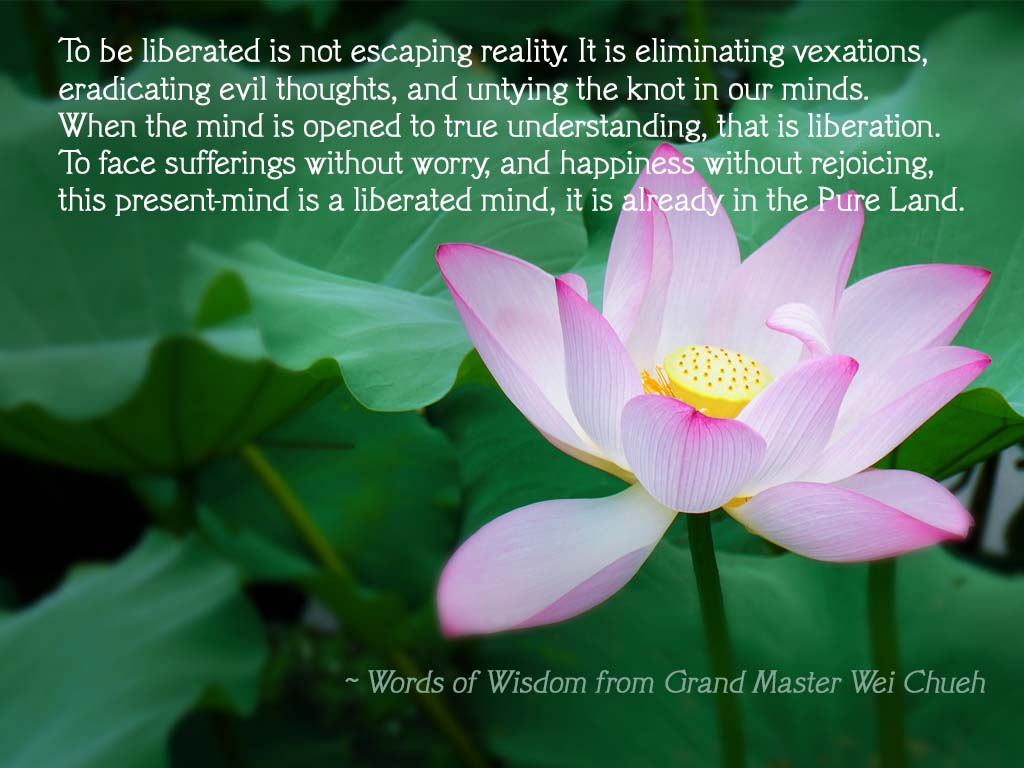 Words of Wisdom from Grand Master Wei Chueh 14