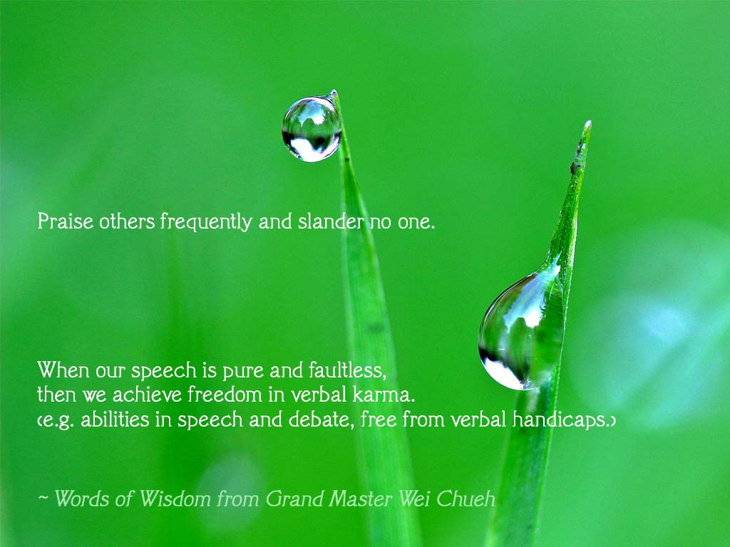 Words of Wisdom from Grand Master Wei Chueh 18