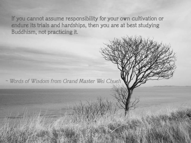 Words of Wisdom from Grand Master Wei Chueh 19