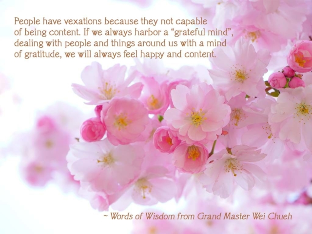 Words of Wisdom from Grand Master Wei Chueh 20