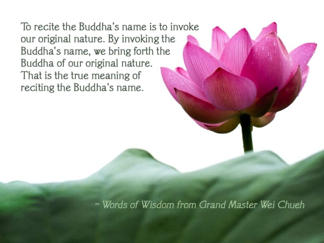 Words of Wisdom from Grand Master Wei Chueh 22