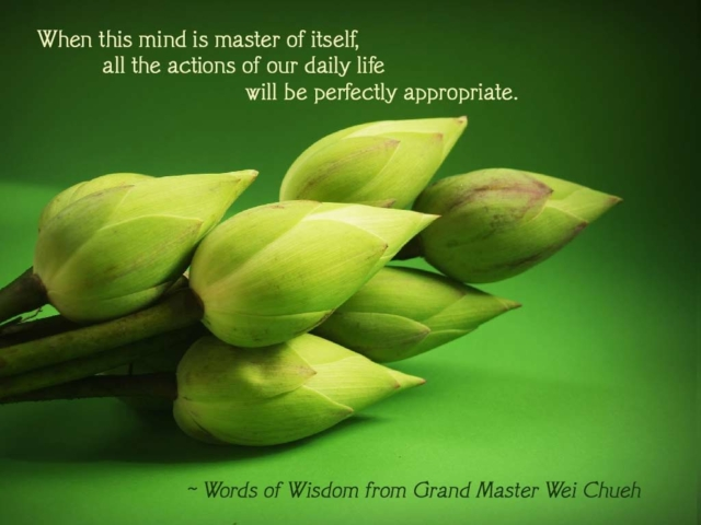 Words of Wisdom from Grand Master Wei Chueh 24