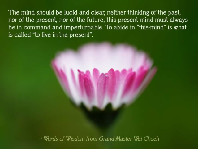 Words of Wisdom from Grand Master Wei Chueh 28