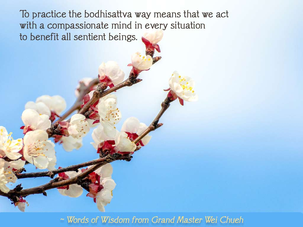 Words of Wisdom from Grand Master Wei Chueh 29