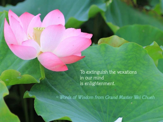 Words of Wisdom from Grand Master Wei Chueh 35