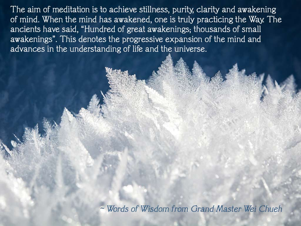 Words of Wisdom from Grand Master Wei Chueh 37