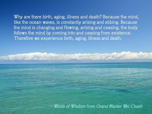 Words of Wisdom from Grand Master Wei Chueh 38